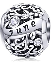 Lorrifal Month 925 Sterling Silver Original Birthstone Charms fit Pandora Bracelets Necklace Perfect Jewelry Birthday Loved Beads Gift for Women Girls Mom Daughter