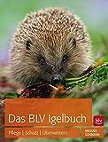 Das BLV Igelbuch: Pflege Schutz  Überwintern
