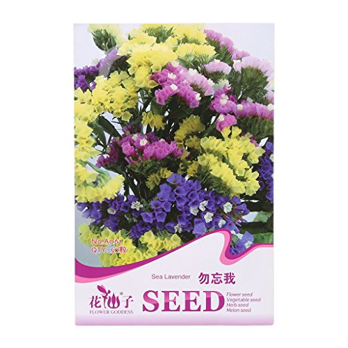 Richi 1Bag Flower Seeds Beautiful and Vivid Flower Seeds Your Favourite in Courtyard Balcony (forget-me-not)