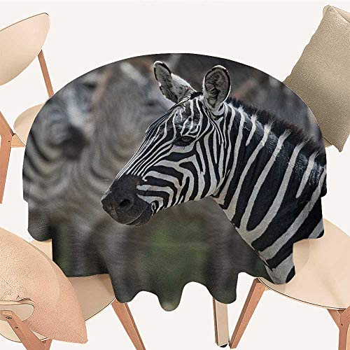 longbuyer African Fabric Tablecloth Zebra in Serengati National Park Safari Animal in Desert Picture Round Tablecloth D 36