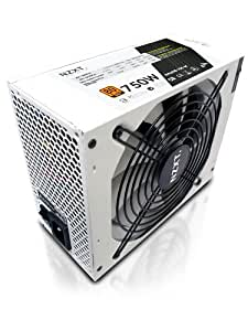 NZXT HALE90 80 Plus Gold 750 Watt Power Supply with Modular Cable HALE90-750-M (White)