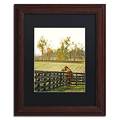 Trademark Fine Art Kentucky Horse Sunrise by Preston Artwork