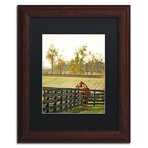 Dawn Framed Art (Kentucky Horse Sunrise by Preston Artwork, 11 by 14