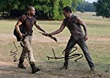 The Walking Dead Tv Print (11.7 X 8.3) Norman Reedus Jon Bernthal Daryl Dixon Shane Walsh