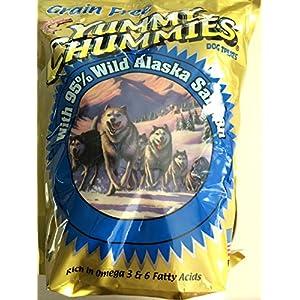 Arctic Paws Yummy Chummies Dog Treats 2.5 Lb (40 Oz) 84