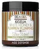 Facial Mask Honey And Cinnamon - Shea Terra Natural Kigelia White Honey & Pumpkin Plumping Face Mask - 4 Ounce