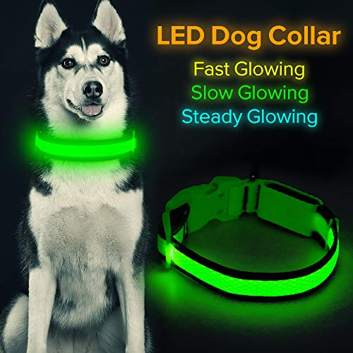 "HiGuard LED Dog Collar, USB Rechargeable Glowing Pet Collar Night Safety LED Light Up with Nylon Webbing Perfect for Small, Medium, Large Dogs (Small Collar[8""-14"" inch / 20.3-35.5cm], Neon Green)"