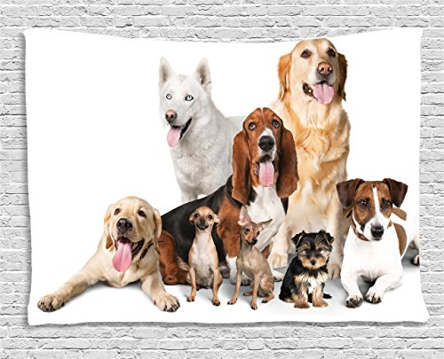 - Ambesonne Dog Lover Decor Collection, Group Of Dogs Posing For Photo Shoot Portrait Togetherness Companionship , Bedroom Living Room Dorm Wall Hanging Tapestry, 60W X 40L Inch