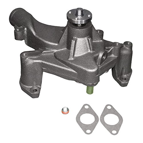 Acdelco 252 181 Professional Water Pump