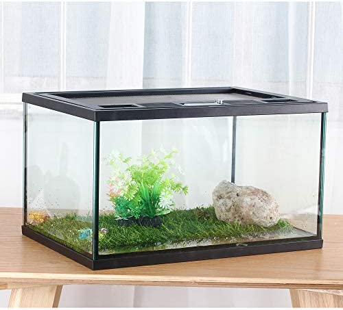 crapelles Frogs Glass Terrarium Feeding kit Tank, Waterproof,for Reptile Amphibians, Insect, Horned Frogs. Waterweed/Prairie Style Habitat,with Green Artificial Turf Pad,Natural Volcanic Rock