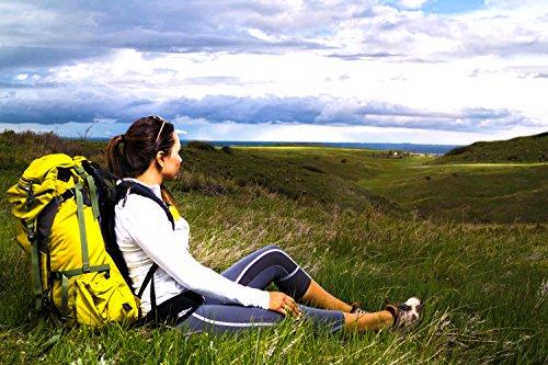 31RTcj0v75L FlipBelt Running & Fitness Workout Belt, Carbon, Large