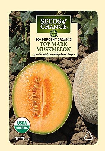 Seeds Of Change 5989 Certified Organic Top Mark Muskmelon (Cantaloupe Seeds)