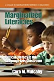 Marginalized Literacies, Cara M. Mulcahy, 1607524546