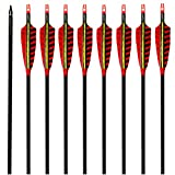 MS JUMPPER Carbon Archery Targeting Arrows 500 Spine with Stripe Real Feathers and Replaceable Tips for Recurve Compound Bow (12 Pack) (28 Inch Arrows)