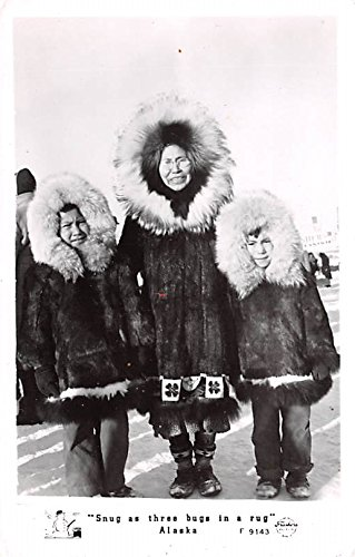 (Snug as three bugs in a rug Unidentified Location , Alaska postcard)