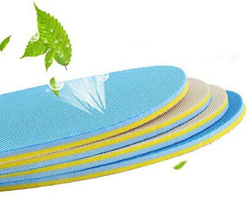 6 Packung Unisex Sport Athletic Schuhe Einlegesohlen Druckentlastung Baumwolleinlegesohlen Blau