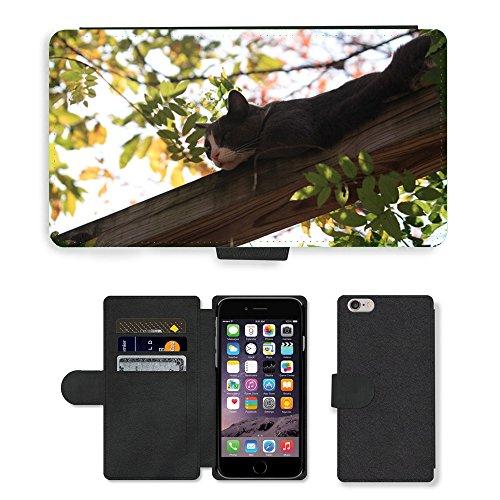 """Just Phone Cases PU Leather Flip Custodia Protettiva Case Cover per // M00128279 Cat arboricoles Adorable Sans // Apple iPhone 6 PLUS 5.5"""""""