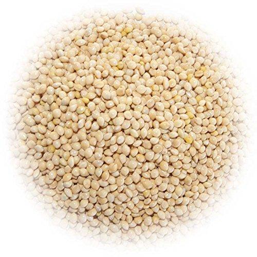 1600 seeds Millet White Proso (White Proso Millet)