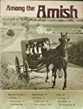 Among the Amish, Melvin J. Horst, Elmer Lewis Smith, 0911410015