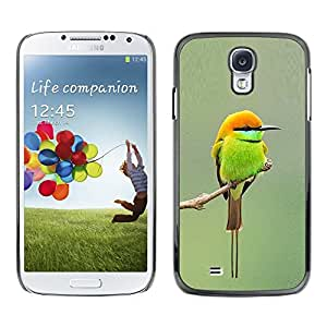 Be Good Phone Accessory // Dura Cáscara cubierta Protectora Caso Carcasa Funda de Protección para Samsung Galaxy S4 I9500 // green orange tiny cute bird blurry branch