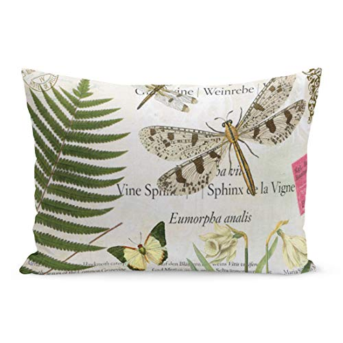 Aikul Throw Pillow Covers Butterfly Modern Vintage French Flowers Nature Fern Garden Pillow Case Cushion Cover Lumbar Pillowcase Decoration for Couch Sofa Bed Car,20 x 26 inchs ()