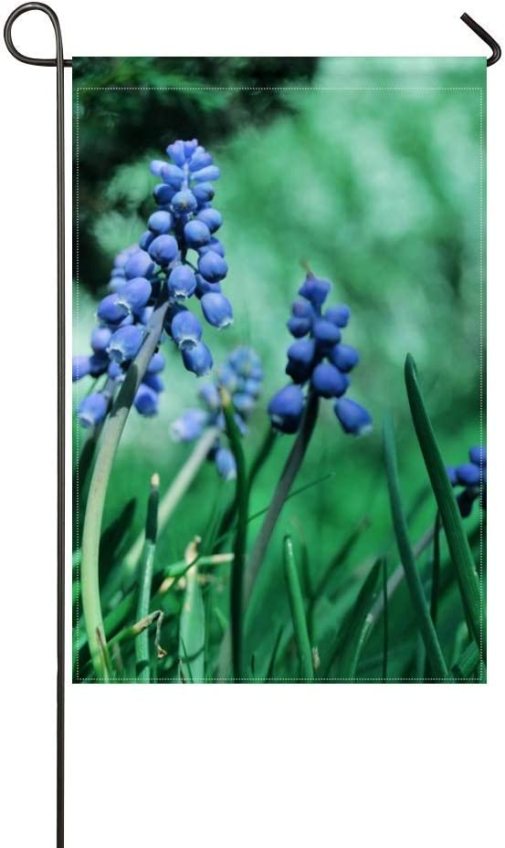 ZLU Garden Flag Muscari Flowers Herbs Grass Grape 12x18 inches(Without Flagpole)