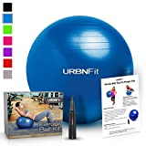 Exercise-Ball-75-CM-for-Stability--Yoga--Workout-Guide-Incuded--Professional-Quality-Blue