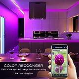 Daybetter Smart WiFi App Control Led Strip Lights