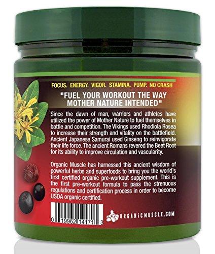 USDA Certified Organic Pre Workout Supplement - Natural Pre Workout & Organic Energy Drink- Non-GMO, Vegan, Paleo, Gluten Free --Wild Berry - 25 Serv.