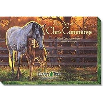 Amazon the art of chris cummings ast90630 blank horse the art of chris cummings ast90630 blank horse greeting card assortment by leanin m4hsunfo