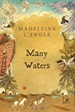 Many Waters, Madeleine L'Engle, 0312368577