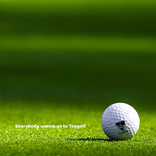 Everybody Wanna Go To Topgolf  Feat  T Bone   Clayton Stanley   Explicit