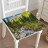Mikihome Dining Chair Pad Cushion Roztoka Stream Tatra National Park Carpathian Mountains Poland Woods Fashions Indoor/Outdoor Bistro Chair Cushion 26''x26''x2pcs
