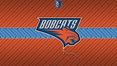 - QIANDONG1 Painting by Numbers Basketball Team Logo Charlotte Bobcat DIY Hand-Painted Oil Painting Acrylic Modern Art,40x50cm,Frameless