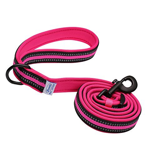 Heavy Duty Dog Leash by ARIKON, Adjustable Length - Reflective Strips - Soft Padded Leash, Super Comfortable Handle for Walks, Perfect Leash for Medium and Large Dogs (Hot Pink)