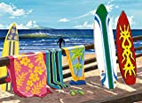 Best Jigsaw Puzzles For Adults - Hang Loose 500 Piece Puzzle Review