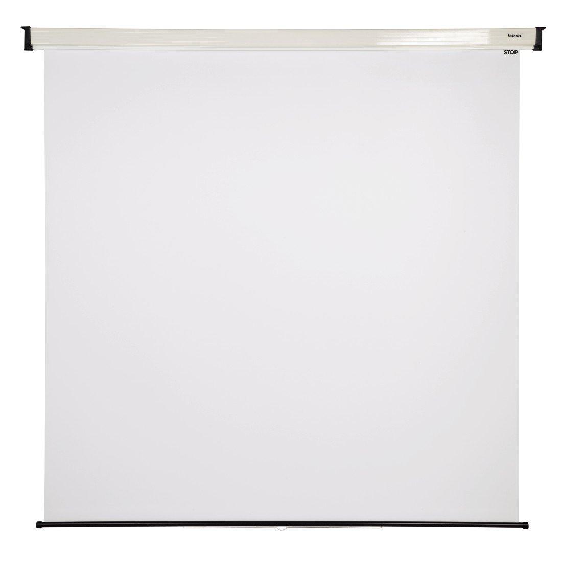 Hama - Pantalla para proyector (240 x 200 cm, 1:1): Amazon.es ...