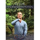 Qi Gong Mindfulness in Motion with Lee Holden (YMAA 2018 DVD) Meditation for Beginners