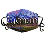 Facial Mask Egg Recipes - Wyoming Snow Mountain Unisex Facemask Ear-loop Anti-dust Mask Riding Breathable Mask