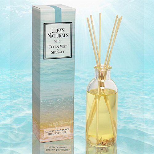 Grass Reed Diffuser - Urban Naturals Ocean Mist & Sea Salt Reed Diffuser by Decorated with Seashells! Beautiful for your Beach Themed Decor | Best Gift Idea for dad, husband, mom, wife, aunt or anyone special