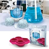 Fun Freeze Brain Shaped Ice Cube Tray Makes 4 Cubes