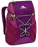 High Sierra 18l Sport Backpack (18 by 11 by 8-Inch), Eggplant/Berry, Blast/Lime, International Carry-On