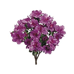 "17.5"" Azalea Bush x9 (Pack of 6) 37"