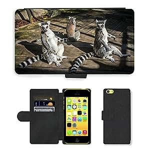 Super Stella Cell Phone Card Slot PU Leather Wallet Case // M00148442 Lemurs Nature Animal Lemuriformes // Apple iPhone 5C