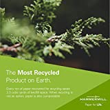 Hammermill Great White 30% Recycled 20lb Copy