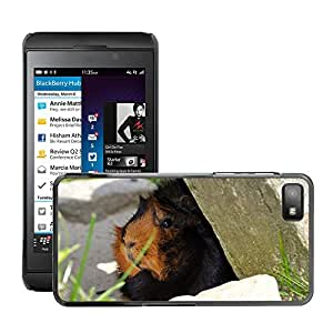Print Motif Coque de protection Case Cover // M00125727 Conejillo de Indias del animal Roedor // BlackBerry Z10