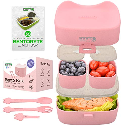 BentoRyte Accessories Insulated Containers Compartment product image