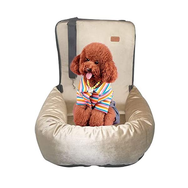 51hwacsouuL ZEEXIPDR Autositz für Hunde,Autositze für Haustiere,Der hochwertige Hundesitz bietet eine komfortable und sichere…