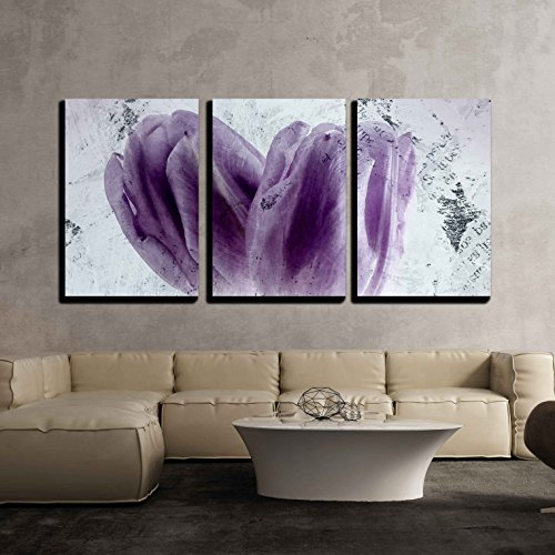 wall26 - 3 Piece Canvas Wall Art - Canvas Wall Art - Two Purple Tulip Flower Petals - Modern Home Decor Stretched and Framed Ready to Hang - 24