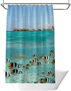 Ocean Decor Collection hookless shower liner Blacktip Reef Shark Chasing Butterfly Fish in Shallow Clear Water Lagoon of Bora Bora an Island Picture Waterproof and moistureproof W48 x L70 Inch